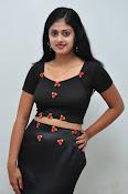 Megha sri photos at Kaki event-thumbnail-13