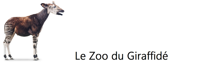 Le Zoo du Giraffidé