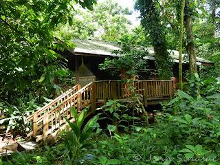 Cabin Pico Bonito