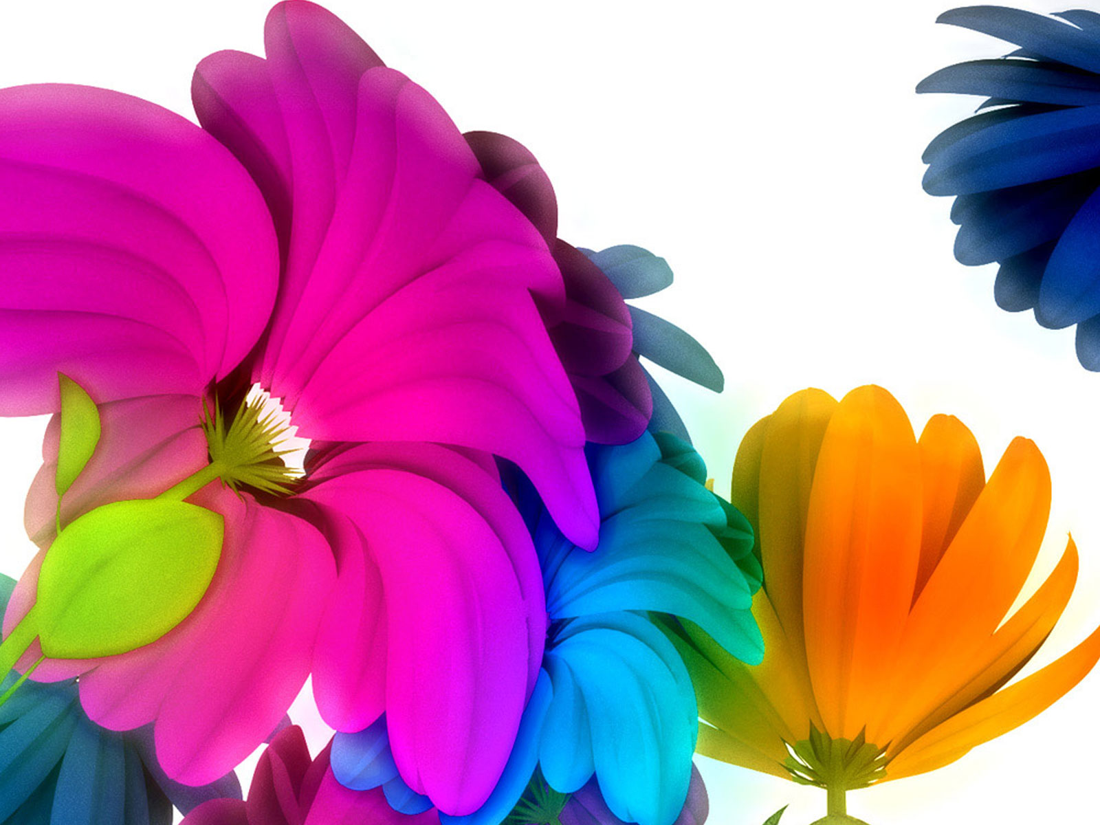 http://1.bp.blogspot.com/-CAuJu5n_k4k/TvNXt1x55xI/AAAAAAAAEDo/MYeWln818Z4/s1600/Music_flowers.jpg