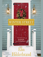 Cover of Winter Street by Elin Hilderbrand