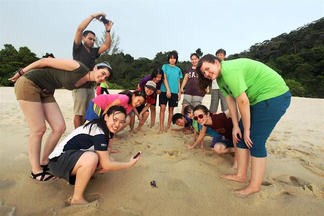 Turtle Beach, Penang