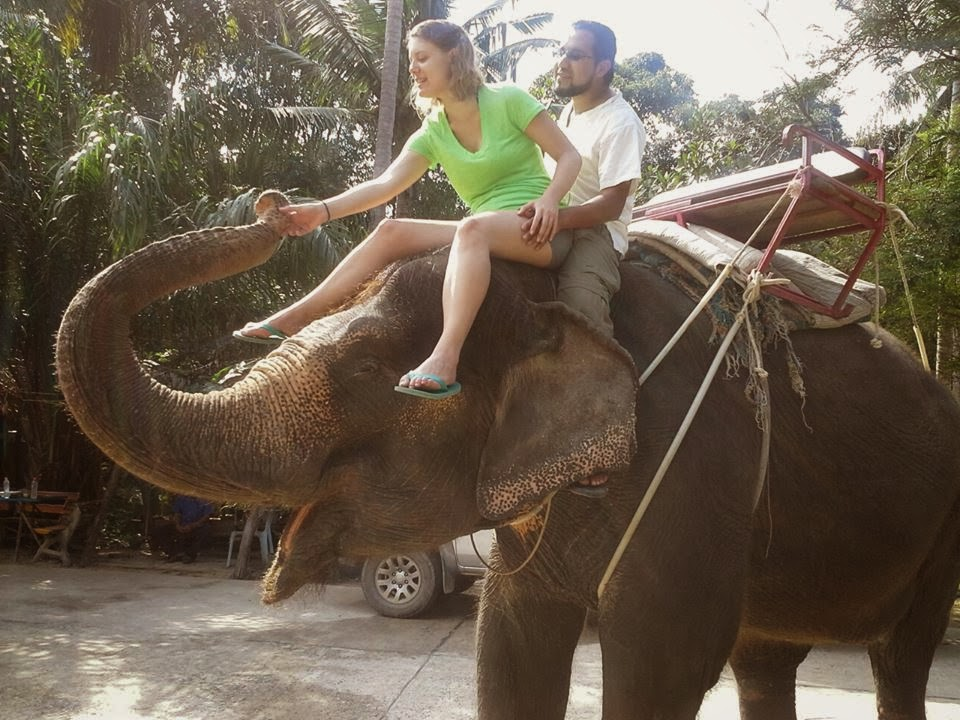 Elephant ride in Koh Phangan, Thailand