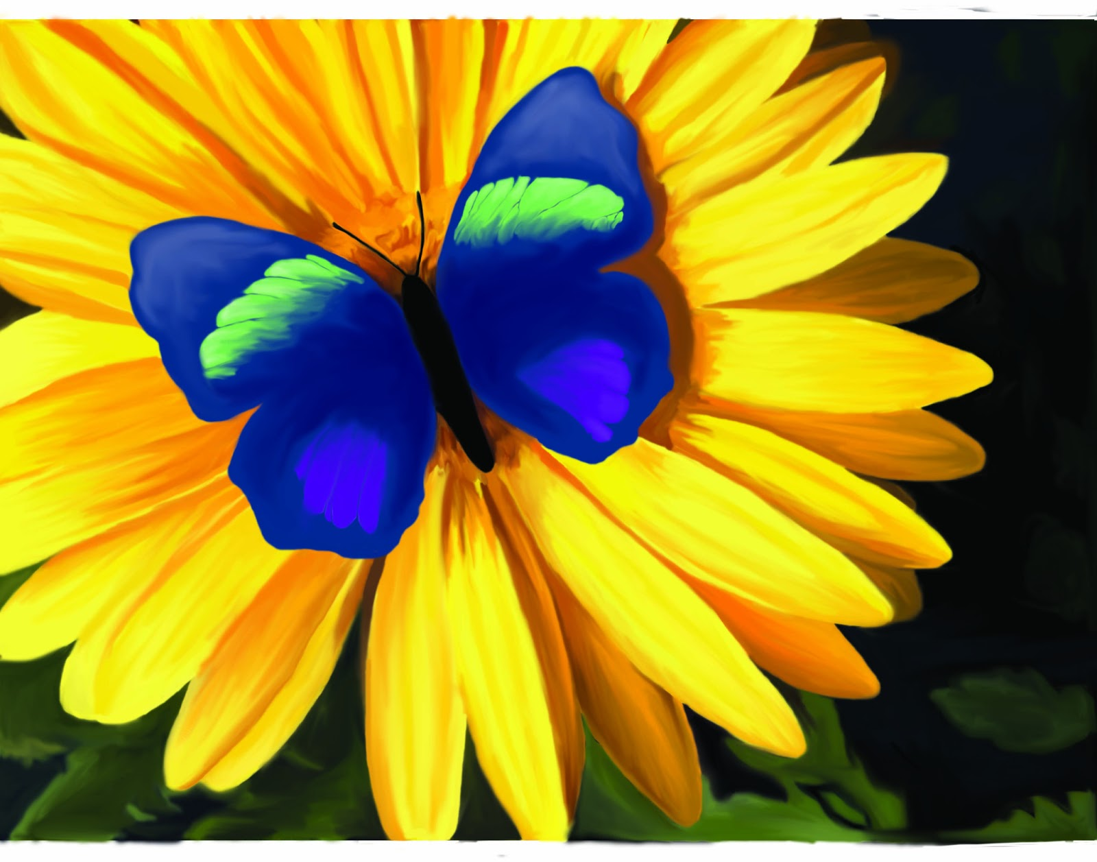 julias creative imaging artwork butterfly on a flower