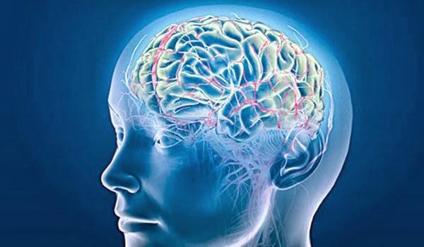 Reduz o risco de acidente vascular cerebral