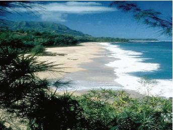 Permukaan bumi terdiri atas daratan dan lautan.