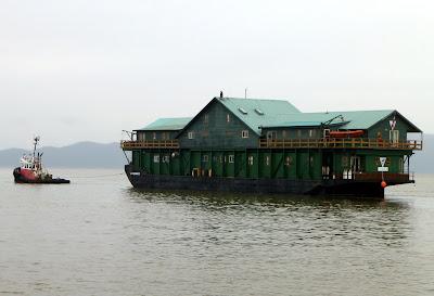 M v wild blue cruising blog 3 in the city for Langara fishing lodge