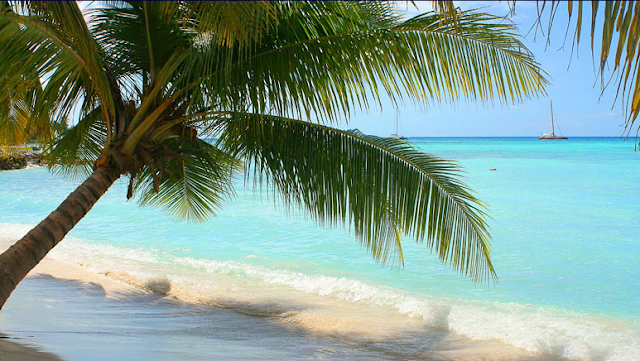 Crociera MSC Caraibi e Antille