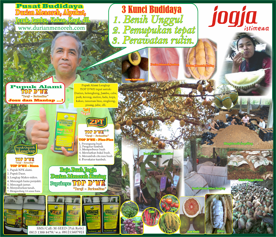 M-SEED Pusat Budidaya dan Pemasaran Tanaman Buah Unggul dan Produksi Pupuk Organik Top D'WE