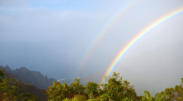 Kokee State Park, Kauai, Hawaï, USA