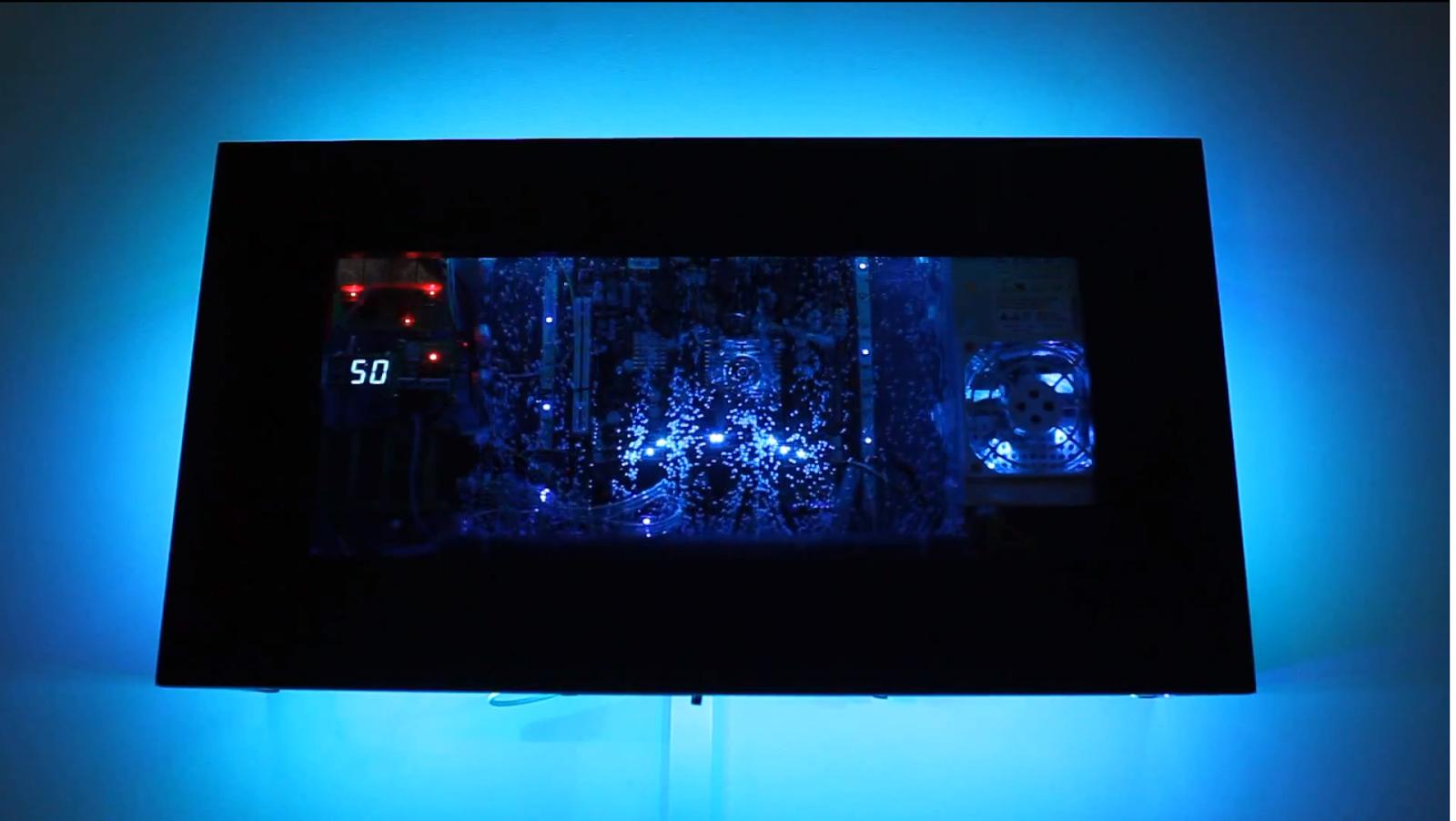 Fish tanks wall mounted images - Wall mounted fish aquarium ...