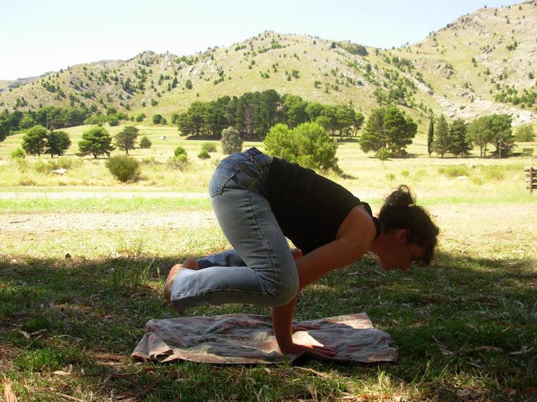SADHANA: el sendero del Yoga
