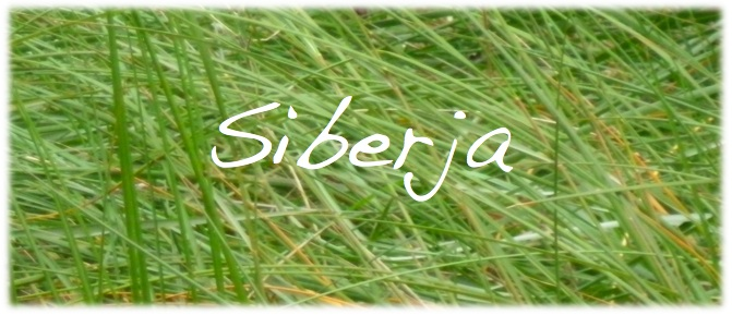 siberja