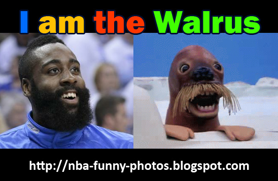 okc-thunder-james-harden-walrus-animal-photo-nba-funny-photos-jokes-2012.jpg
