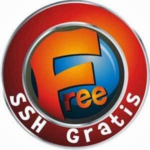 Ssh gratis 28 maret 2014 server Singapore, Usa dan Jepang