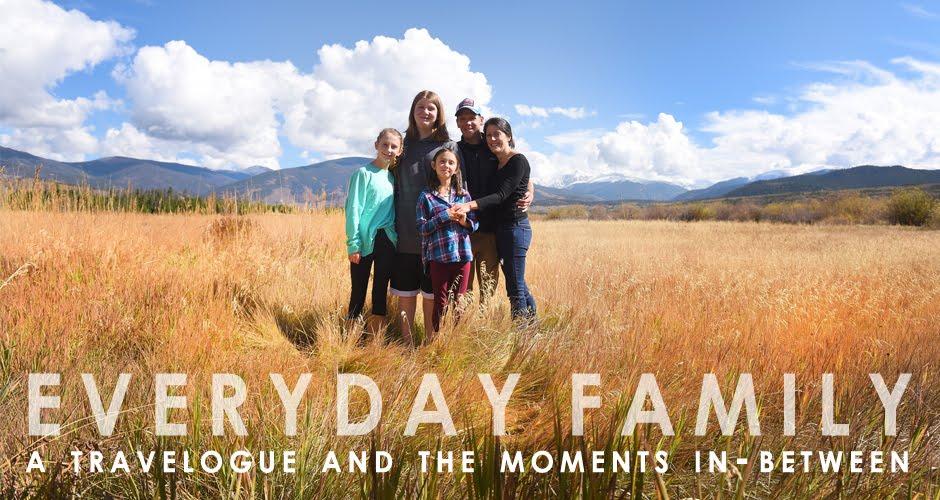 BLOG:  Everyday Family