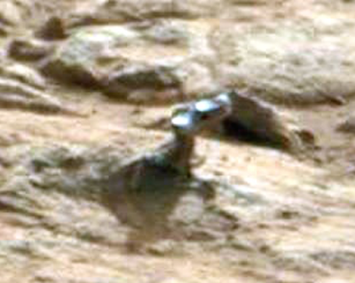 Lizard Creature Found On Mars 2015, UFO Sighting News