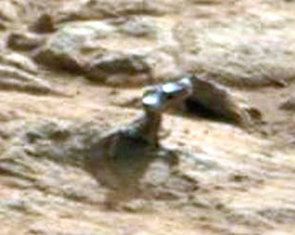 nasa mars lizard-#10