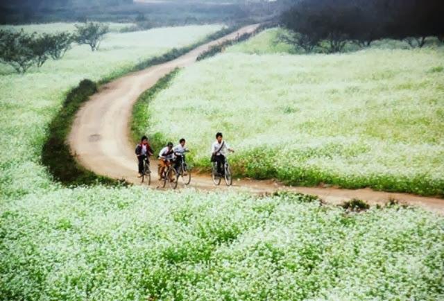 Cho thuê xe đi Mai Châu - Thung Nai Hòa Bình giá rẻ