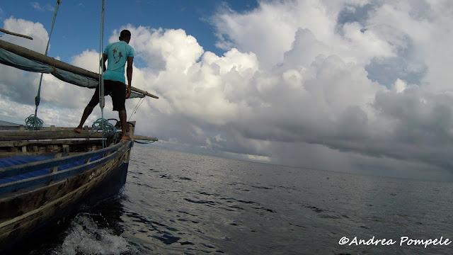 spotting whale shark mafia island