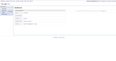consola de API de Google