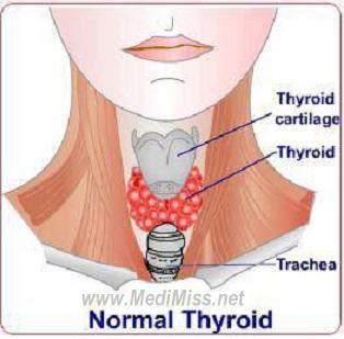 Home Remedies for Thyroid Disease