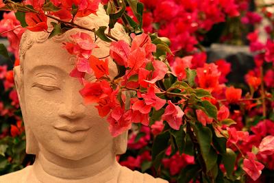 buda-flores-bugambilias-zen-siria-grandet-feng-shui