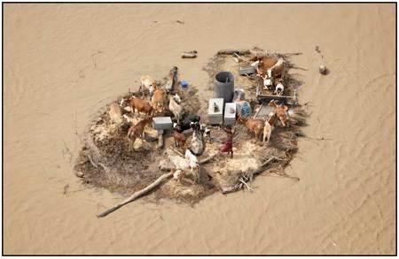bertahan-di-tengah-banjir