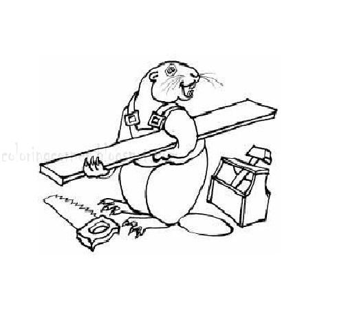 Free Beaver Coloring Pages Funny