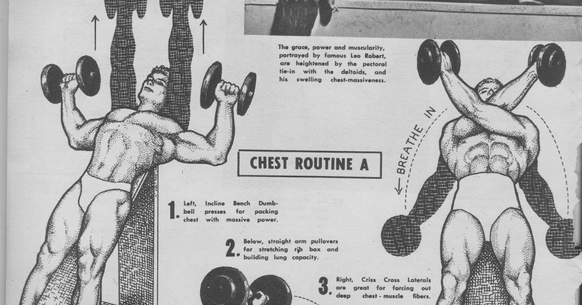 straight arm dumbbell pullover muscles worked. the tight tan slacks of dezso ban: chest training with unusual exercises - charles a. smith (1955) straight arm dumbbell pullover muscles worked a