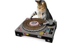 DJ ZED MIXEANDO !!!!!