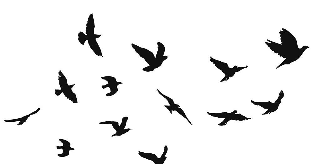 Vinte Dois Outonos DIY Decoração Estilo Tumblr (Pássaros)