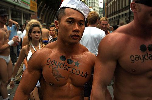 Gaydar gay dating site