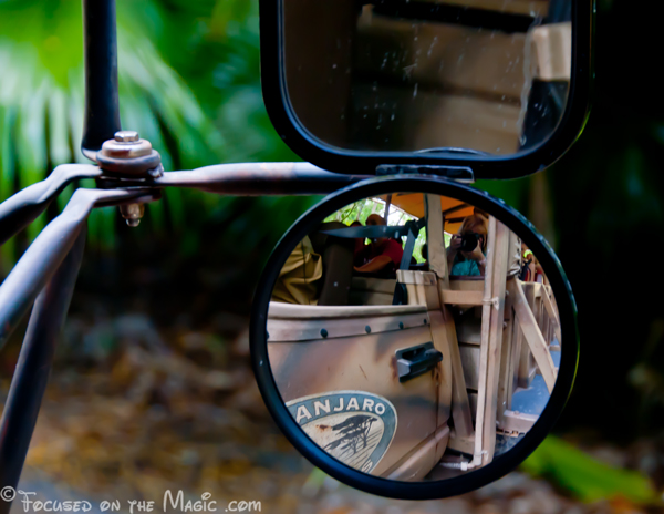 Self Portrait, Kilimanjaro Safari, Disney World, Florida