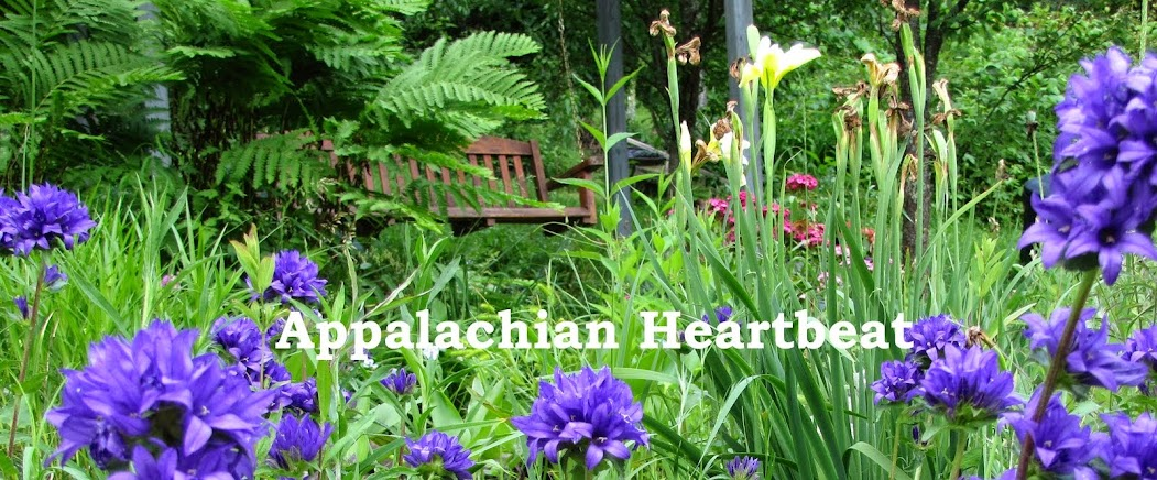 Appalachian Heartbeat