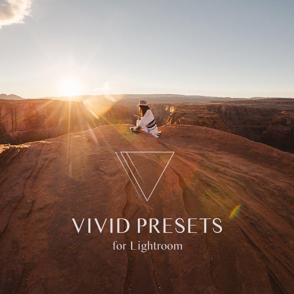 VIVID PRESETS