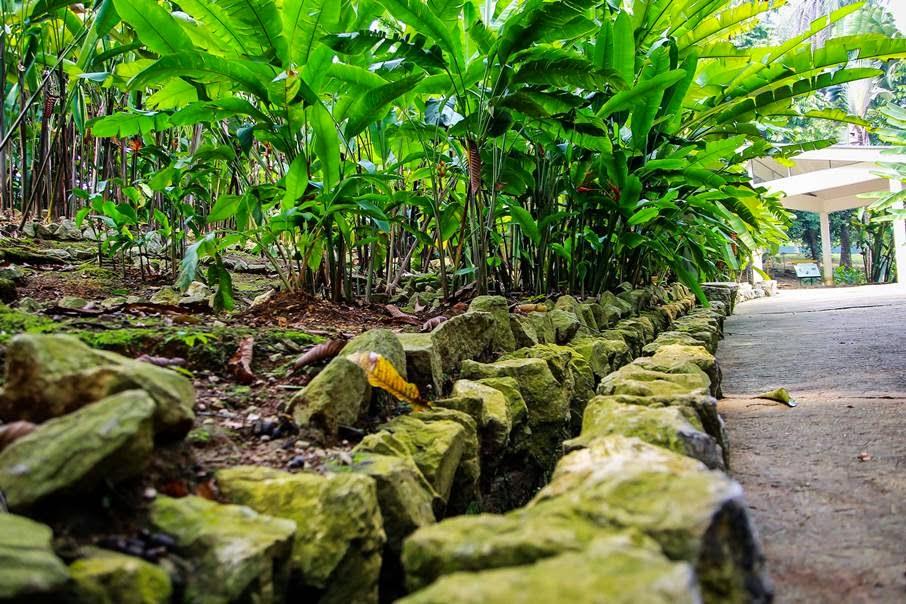 Gambar Sekitar Jom Outing Taman Botani Putrajaya