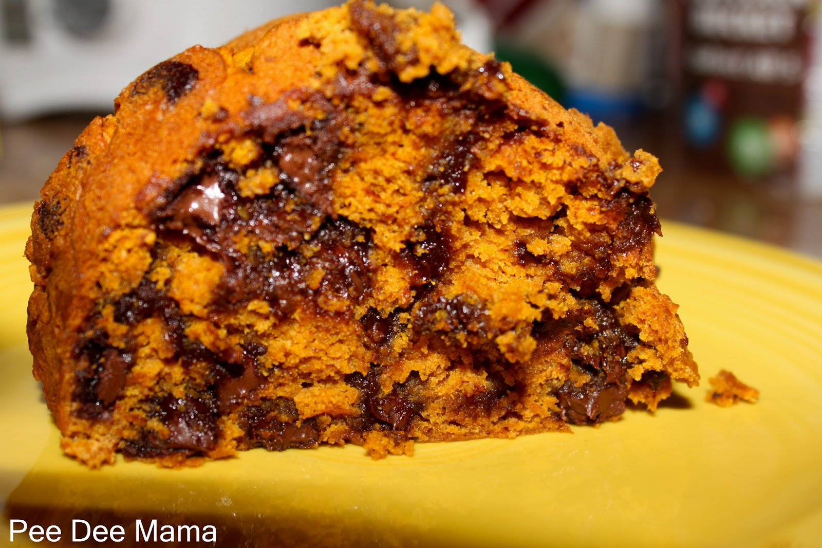 Tales of a Pee Dee Mama: Chocolate Chip Pumpkin Spice Cake