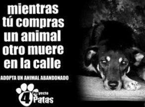 Muy humano: Cra y venta de animales.