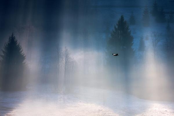 Super Landscape Photography