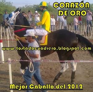 EL CABALLO DEL AÑO 2012