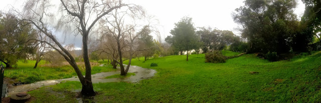 A river runs through a garden in Constantia after heavy winter rains