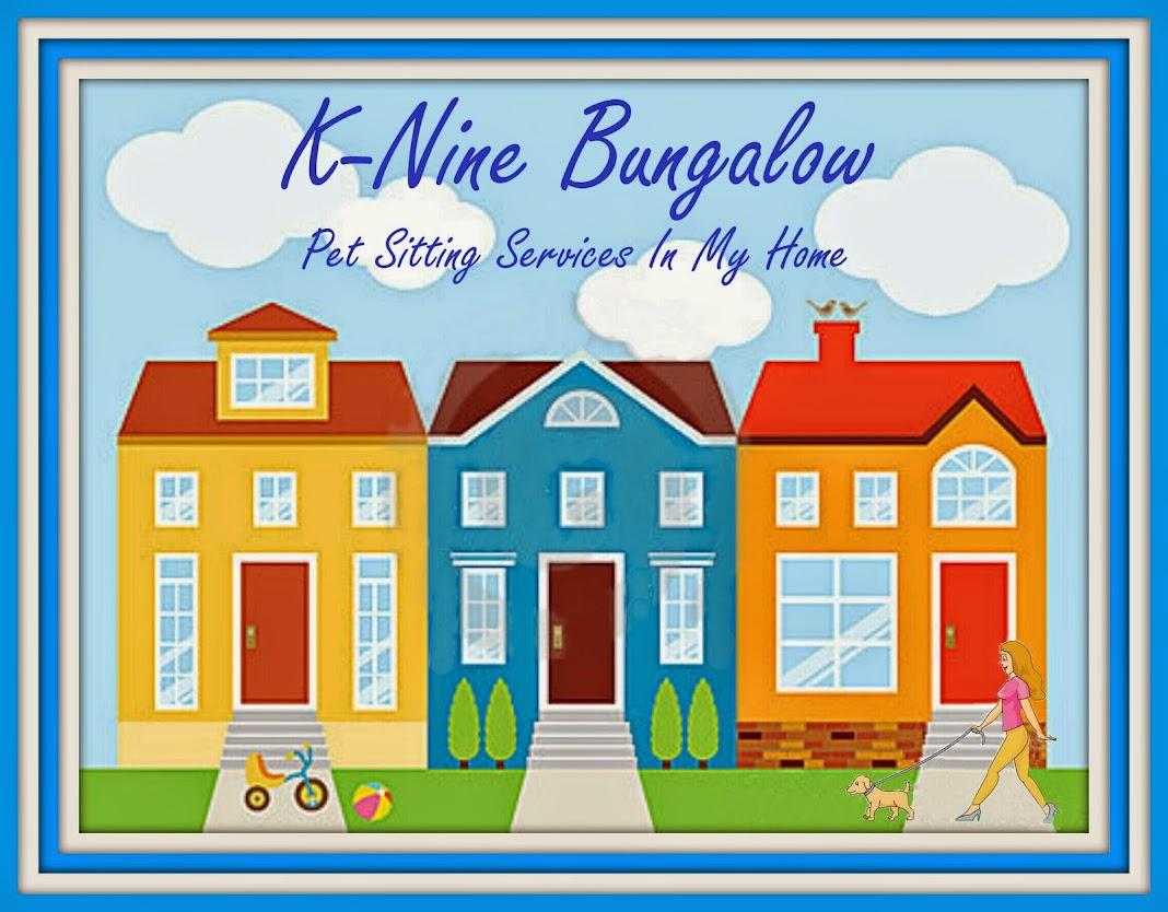 K-NINE BUNGALOW PET SITTING SERVICES