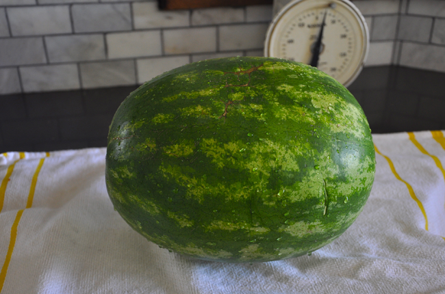 How to Pick out a Ripe Watermelon and Cube it
