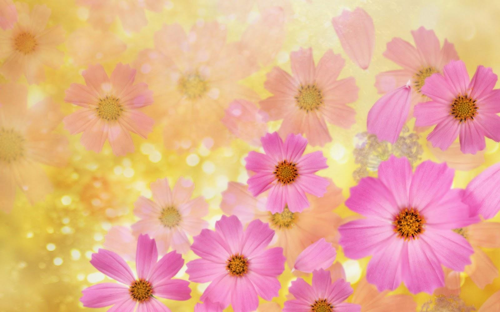 flores de primavera - Fotografias y fotos para imprimir