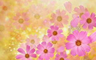 colores pastel para flores de primavera