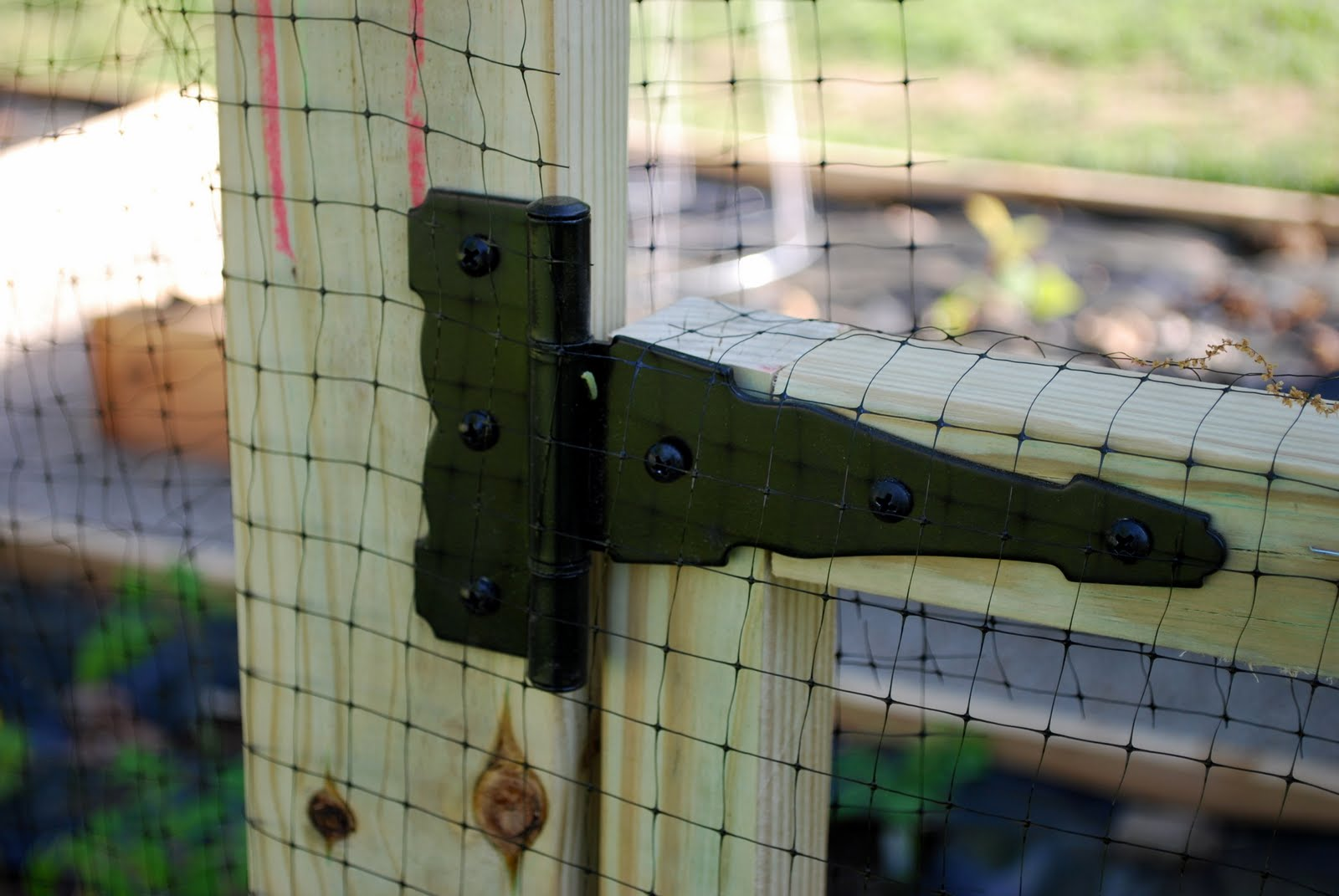 Mike attached the gate door to the posts with simple hinges from Home
