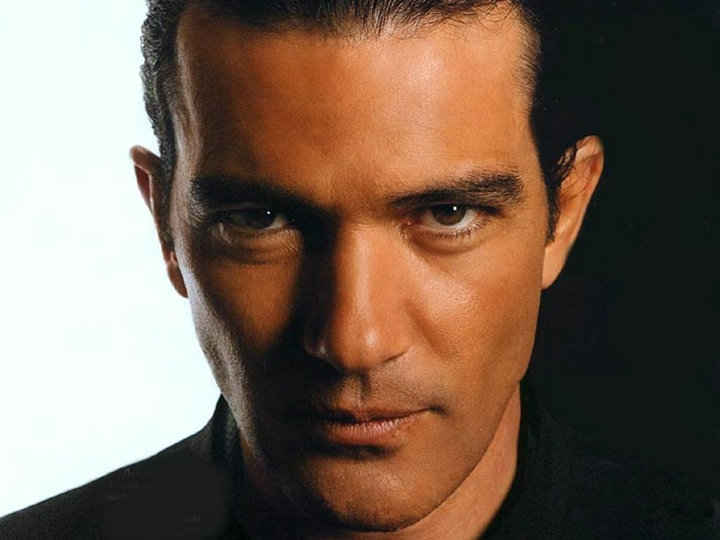 antonio banderas, celibataire, divorce, hollywood, melanie griffith, happy news, happy journal