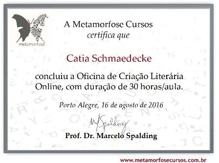 *Oficina de Criação Literária Online com Prof.: Marcelo Spalding