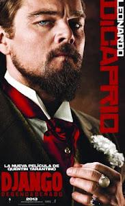 Ver Django Desencadenado (2013) online